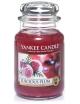 YANKEE CANDLE Duża świeca zapachowa - Luscious Plum (duży słój)