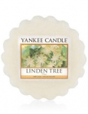 YANKEE CANDLE Wosk zapachowy Linden Tree
