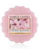 YANKEE CANDLE Wosk zapachowy Cherry Blossom