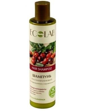 Regenerujący Szampon do Włosów Uszkodzonych i Farbowanych – Ecolab