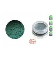 Alva GREEN EQUINOX Pigment do makijażu Guess what? Green!