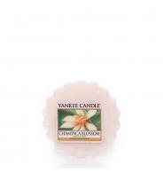YANKEE CANDLE Wosk Champaca Blossom