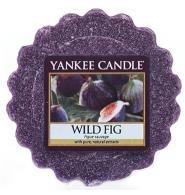 YANKEE CANDLE Wosk zapachowy DZIKA FIGA - Wild Fig