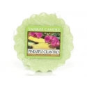 YANKEE CANDLE Wosk zapachowy Pineapple cilantro